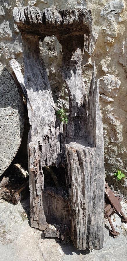 Det ruttna wood stycket från maler royaltyfria bilder