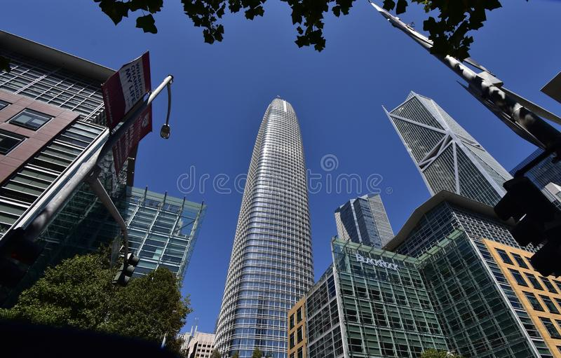 Det Salesforce tornet som framför allt stiger vila, 1 fotografering för bildbyråer