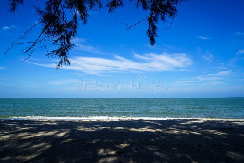 Det sceniska landskapet av mjuk abstrakt trädskugga och skuggamodellen på sand sätter på land med havsvatten, ljus horisontbakgru arkivfoto