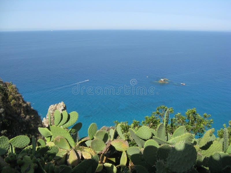 Det Skyblue havet med vaggar arkivbild