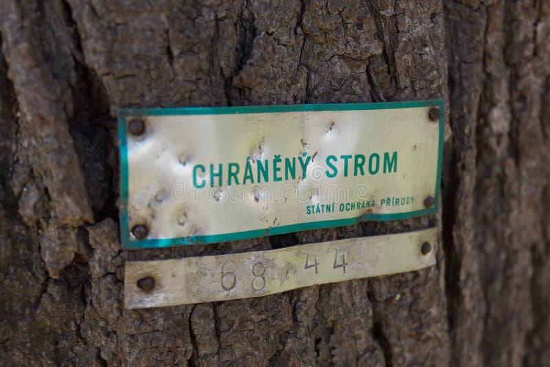 Det skyddade trädet undertecknar i tjeckiskt språk på skäll arkivbilder