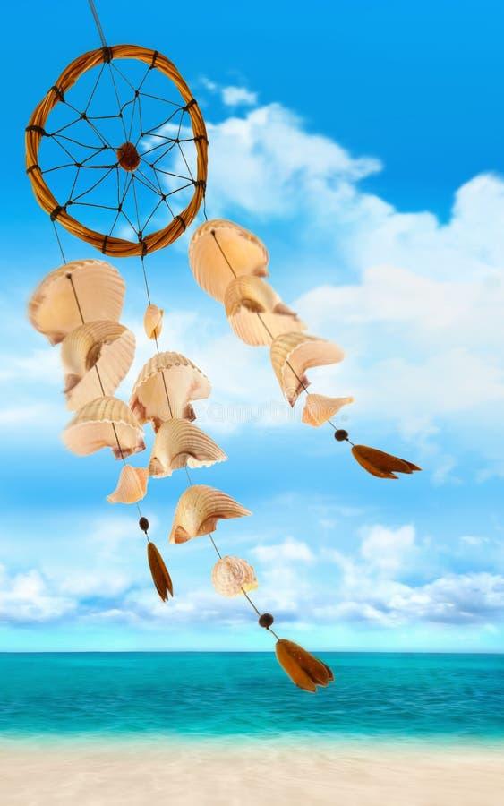 det slående havet shells wind royaltyfria bilder