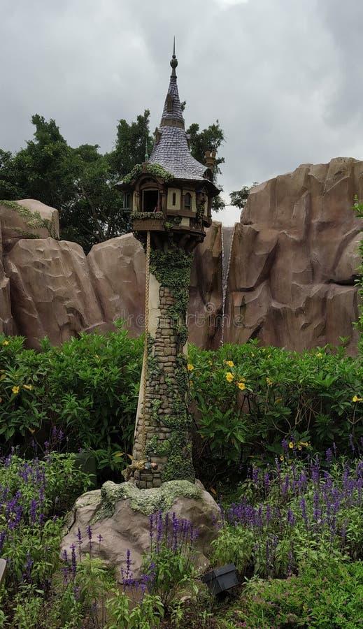 Det slottdisney tornet vaggar bergsommargräsplan arkivbilder