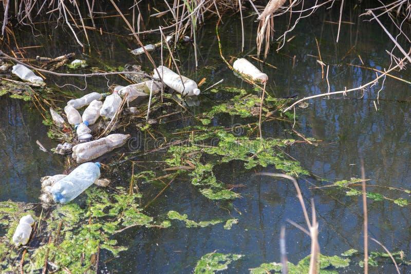 Det smutsiga kloak och hushållet rackar ner på i den lilla floden, tillväxt för orsaker för bevattningkanal snabb av alger grönt  fotografering för bildbyråer