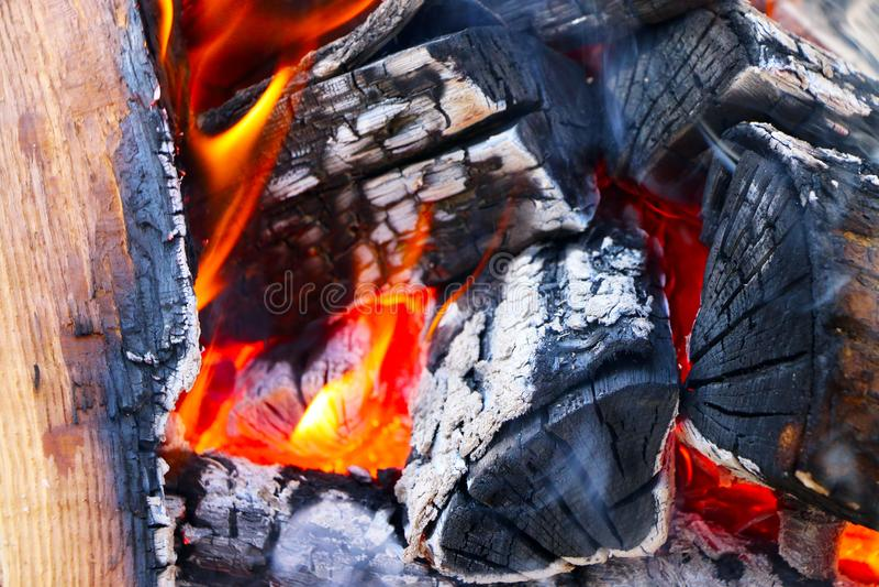 Det stora vedträt bränner closeupen fotografering för bildbyråer