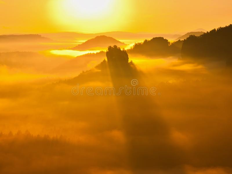 Det storartade kuflandskapet, fjädrar dimmig soluppgång i en härlig dal Kullar ökande från dimma, dimman färgas till guld arkivbilder
