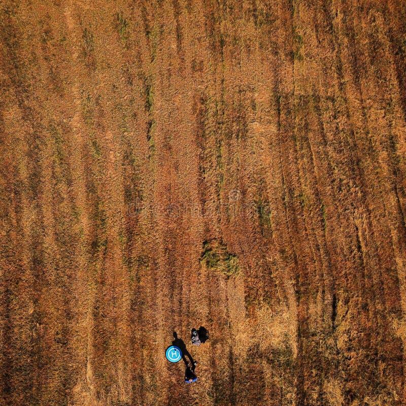 Det surrArial skottet, fältsurr beskådar från över fotografering för bildbyråer