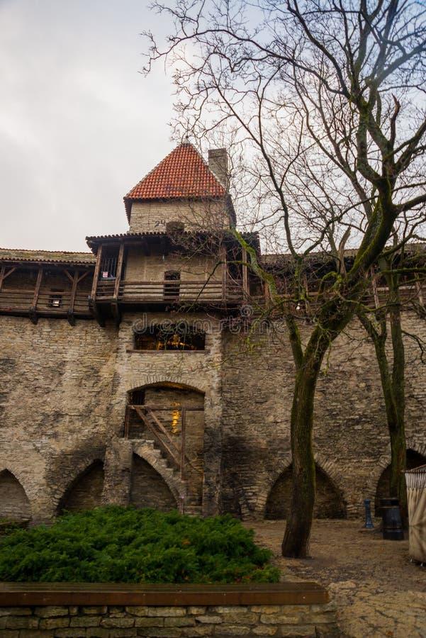 Det tidigare fängelsetornet Neitsitorn i gamla Tallinn, Estland Jungfru- torn royaltyfri foto