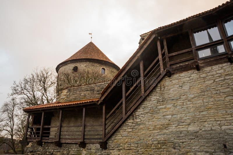 Det tidigare fängelsetornet Neitsitorn i gamla Tallinn, Estland Jungfru- torn arkivbild