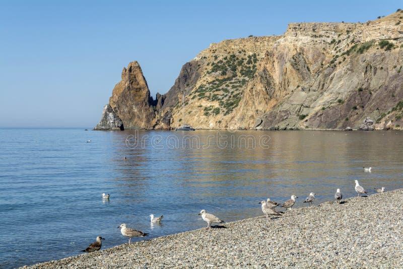 Det tidlösa landskapet med branta klippor, blått gör klar havet Pebble Beach av halvön av Krim arkivbilder