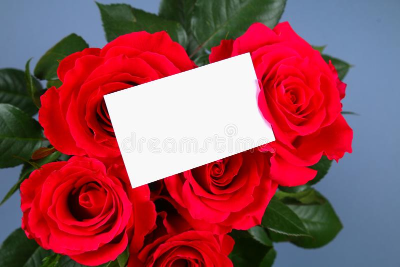 Det tomma vita gåvakortet på en säng av röda roskronblad, ordnar till för ditt meddelande arkivfoto