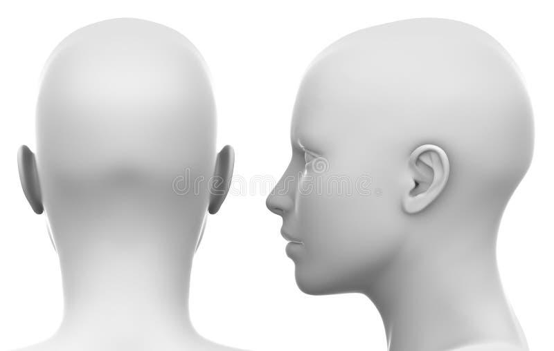 Det tomma vita kvinnliga huvudet - sid och dra tillbaka sikten royaltyfri illustrationer