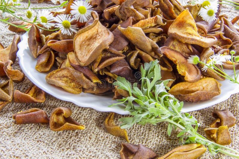 Det torkade bruna päronet skivar den vita plattan med vita blommor Den vita tusenskönan blommar och en grön malörtfilial Användba royaltyfri fotografi