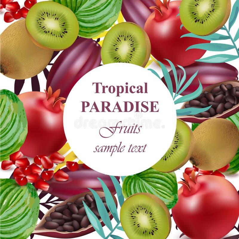 Det tropiska paradiset bär frukt avokadot, papayaen, kiwin, granatäpplet, palmbladvektor vektor illustrationer