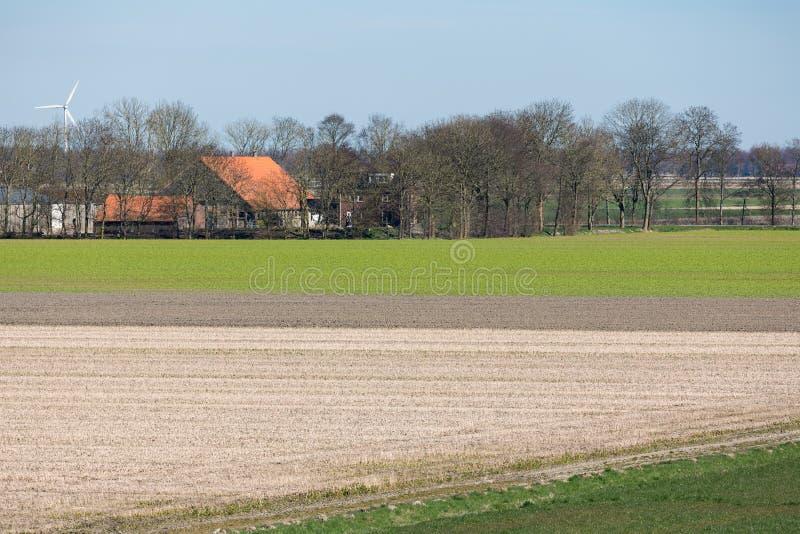 Det typiska holländska polderlandskapet med lantbrukarhemmet och gör bar fält arkivfoton