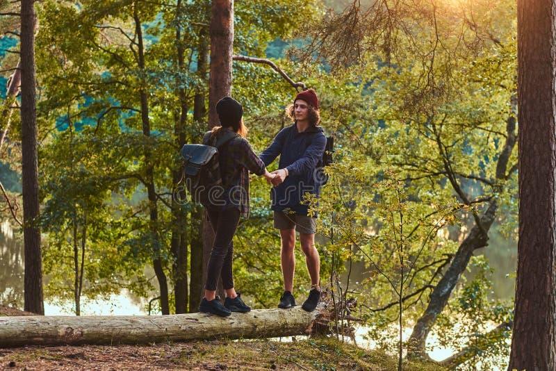 Det unga hipsterparinnehavet räcker anseende på en trädstam i en härlig skog på solnedgången Lopp, turism och vandring royaltyfri fotografi