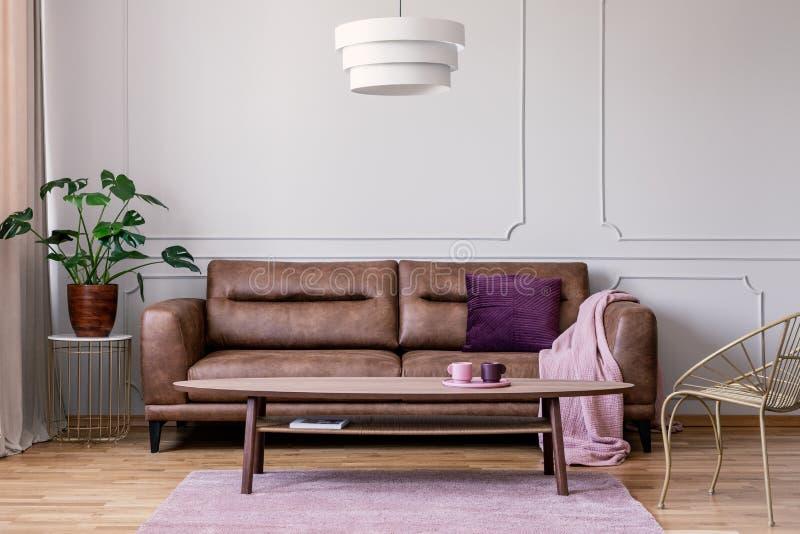 Det verkliga fotoet av den bruna lädersoffan med den violetta kudden och pastellfärgade rosa färger filt anseende i ljus - grå va arkivfoto