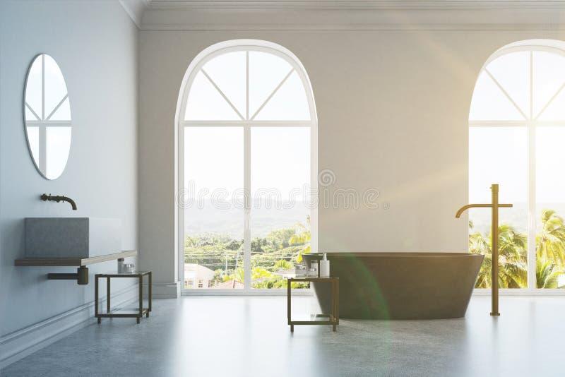 Det vita badrummet, marmor badar och sjunker tonat stock illustrationer