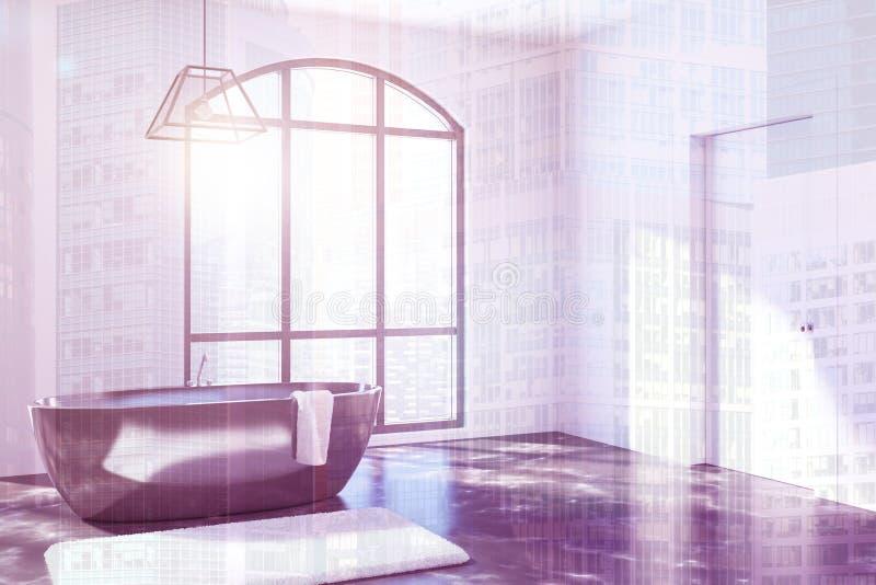 Det vita badrummet, svart badar tonat royaltyfri illustrationer