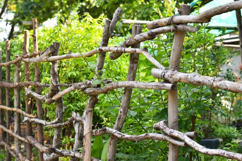 Det Wood staketet som planteras och, blockerar huset arkivbilder