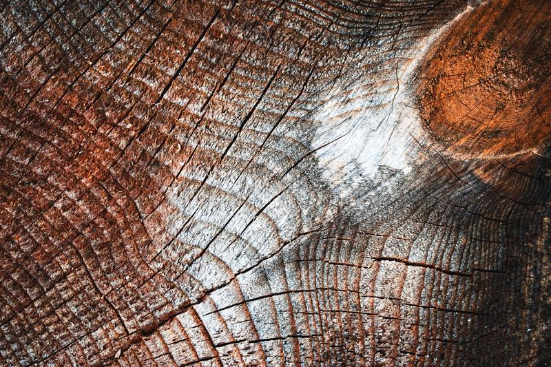 Detail abstract wood surface. Background or texture Detail abstract wood surface stock photo