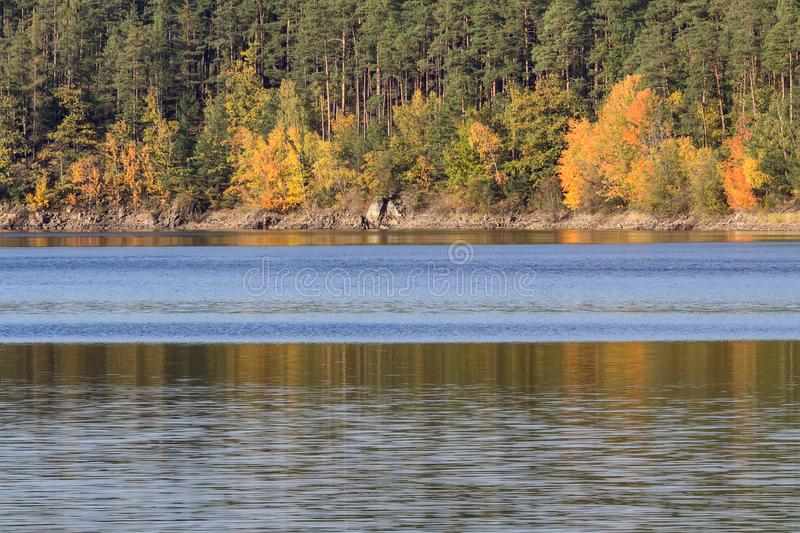 Detail of autumn colorful trees with water, Czech landscape royalty free stock photo