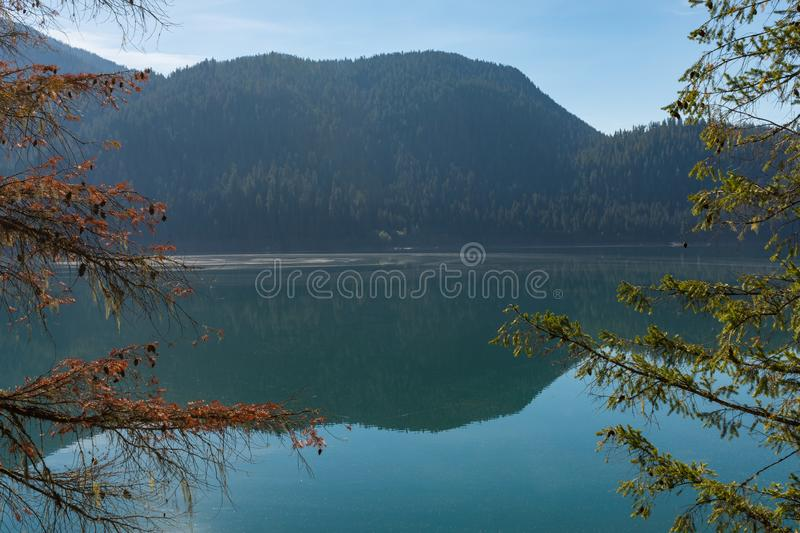Detail of Baker Lake water, shore and trees, in Norh Cascades. Washington stock photography
