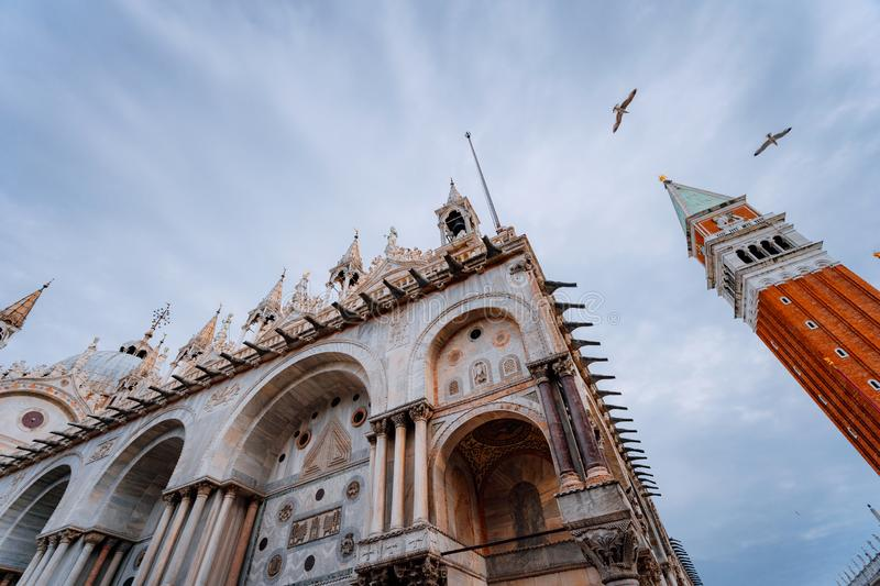 Detail of the bell tower Campanile di San Marco and the cathedral Cattedrale of St. Mark in Venice and flying seagulls royalty free stock images