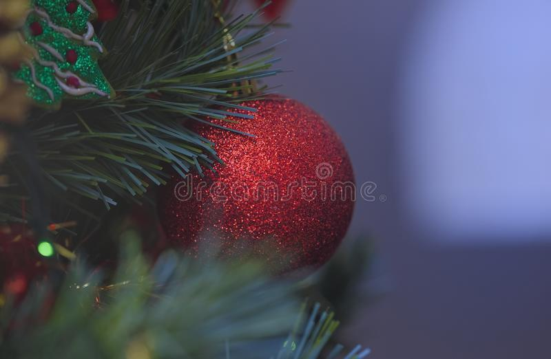 Detail of Christmas decoration on tree with coloured lights. Christmas tree in background royalty free stock image