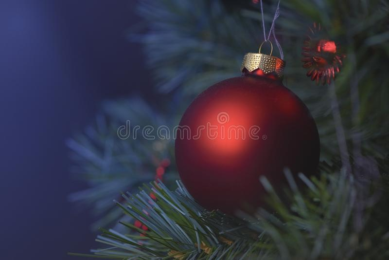 Detail of Christmas decoration on tree with coloured lights. Christmas tree in background stock image