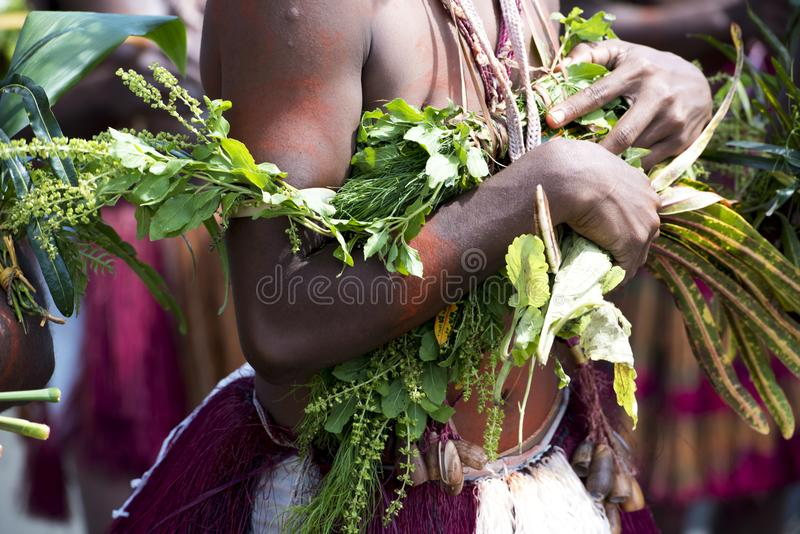 Detail of costume dancer on Sepik River, Papua New Guinea. Closeup of Accessoires of traditional dancer in Kopar at Sepik River, Papua New Guinea royalty free stock photo