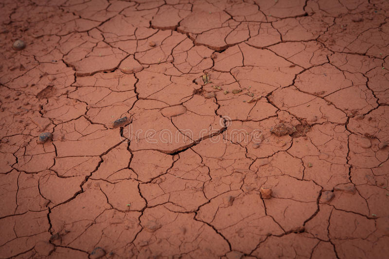 Dried out soil texture. Detail of the cracked soil royalty free stock photos