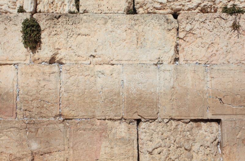 Detail der Klagemauer-Kalkstein-Blöcke stockfotos