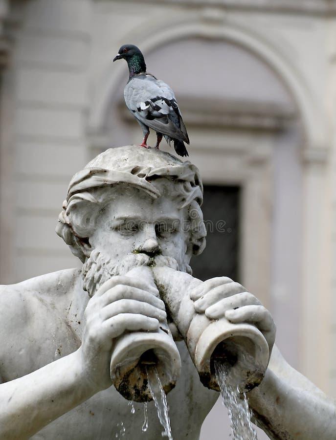 Detail der Statue des Brunnens im Marktplatz Navona lizenzfreie stockfotografie