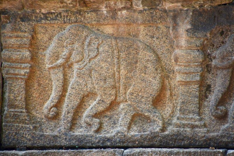 Detail des Elefanten auf Ruine bei Polonnaruwa lizenzfreie stockfotografie