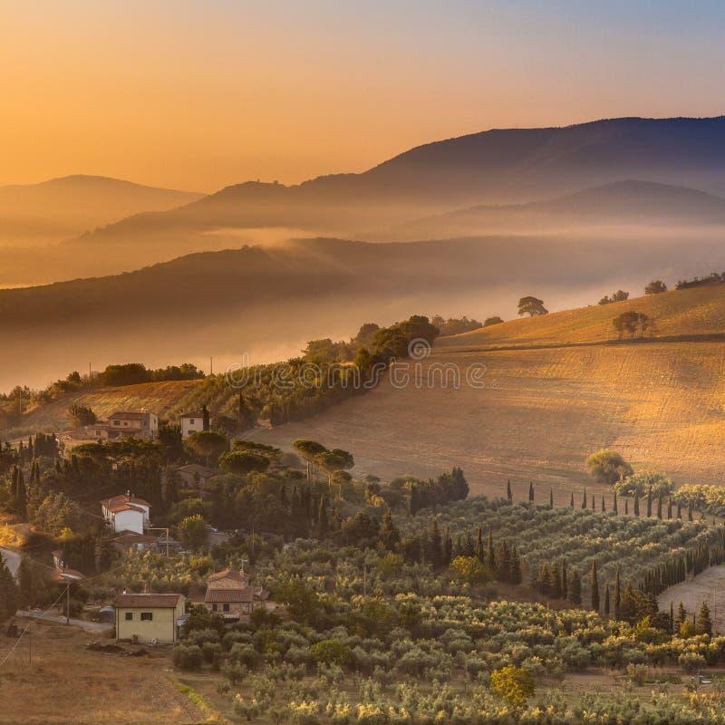 Detail des toskanischen Dorfs im Morgen-Nebel stockbild