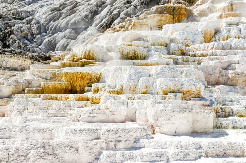 Detail dichte mening van geothermisch land in Yellowstone NP royalty-vrije stock afbeeldingen