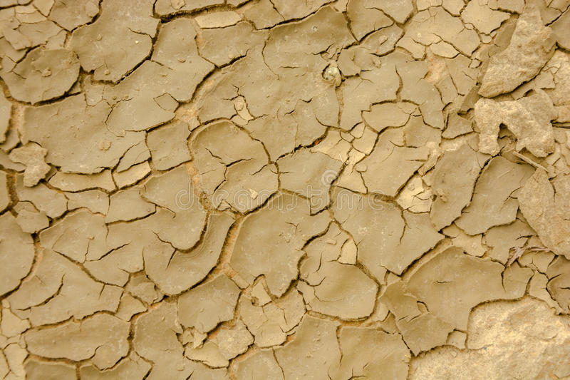 Detail of the dried out land royalty free stock photography