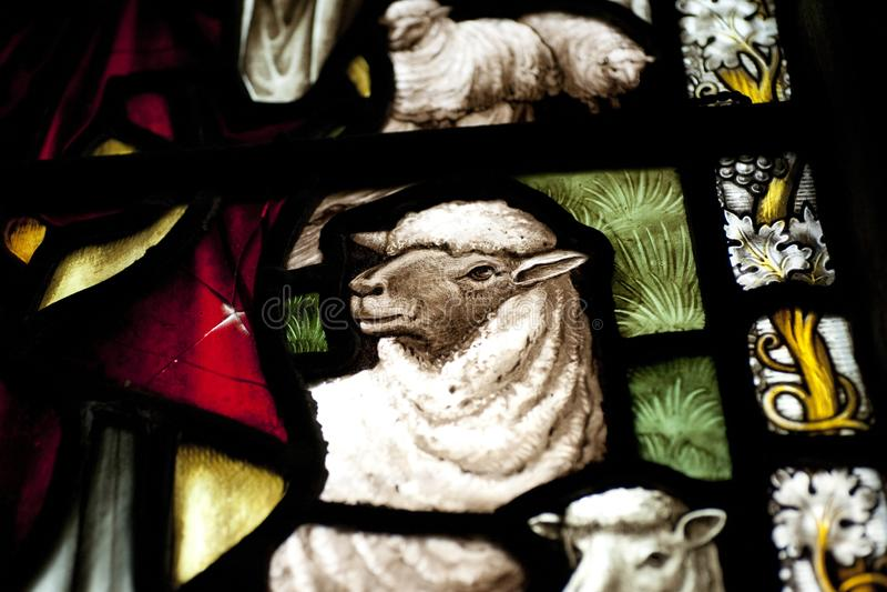 Detail eines Lamms in einem Buntglasfenster in Crowland-Abtei, Cr lizenzfreies stockbild