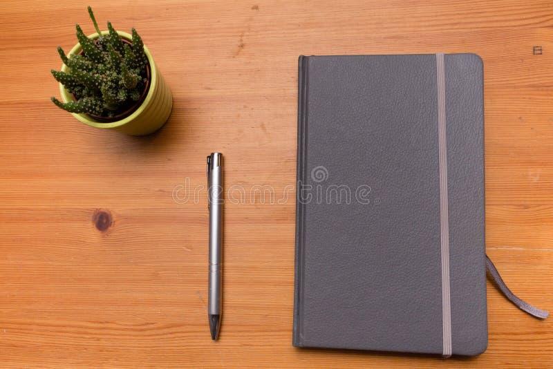 Detail eines Notizbuches und des kleinen Kaktus auf Holztisch, Minimalismus stockfotos