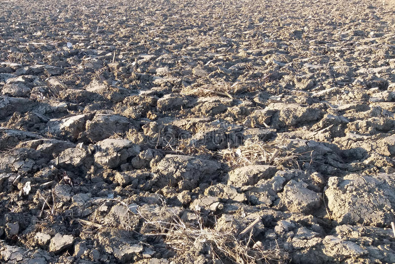 The detail of the element earth, cracked and plowed. The detail of the element earth, cracked, on the Sun, plowed for planting plants royalty free stock photo