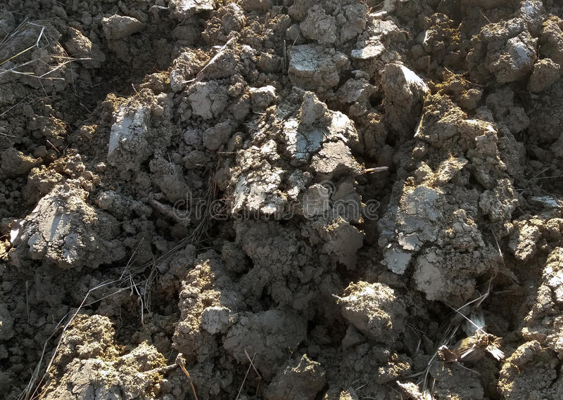 The detail of the element earth, cracked and plowed. The detail of the element earth, cracked, on the Sun, plowed for planting plants stock image