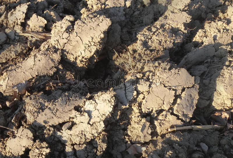 The detail of the element earth, cracked and plowed. The detail of the element earth, cracked, on the Sun, plowed for planting plants stock photos