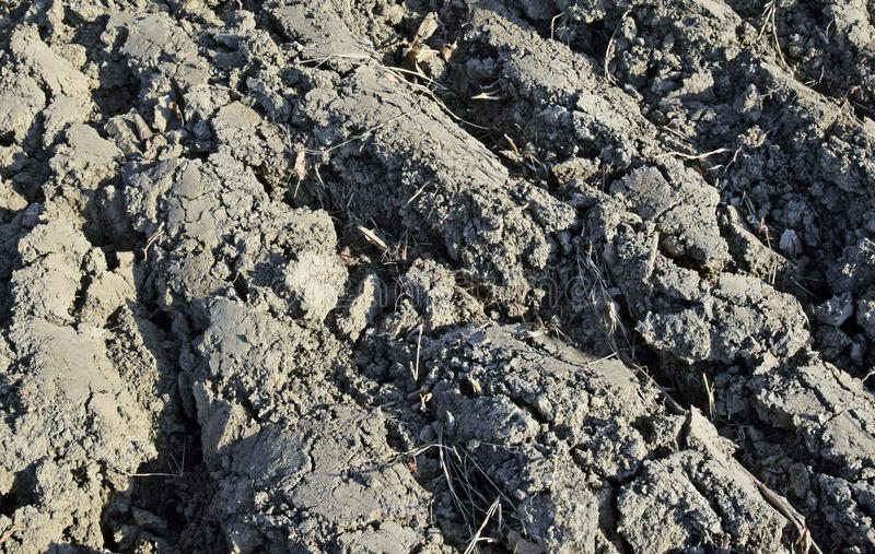 The detail of the element earth, cracked and plowed. The detail of the element earth, cracked, on the Sun, plowed for planting plants stock photo