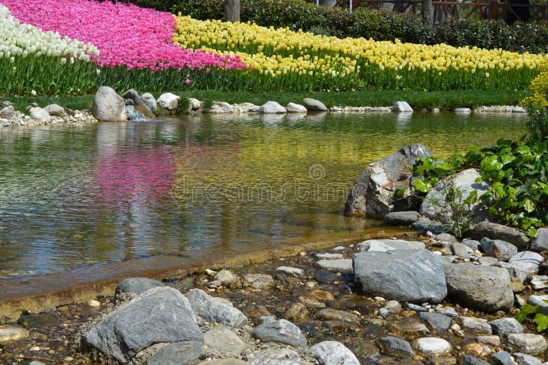 Detail in Emirgan-Park, weinig meer en kleurrijke bloemen op achtergrond stock afbeeldingen