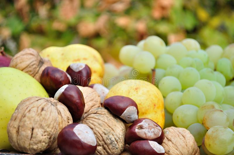 Detail of fresh colorful autumn fruits and vegetables royalty free stock photography