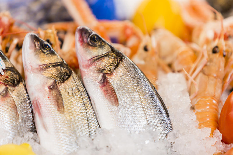 Download Seafood stock image. Image of catch, appetizer, healthy - 29737471