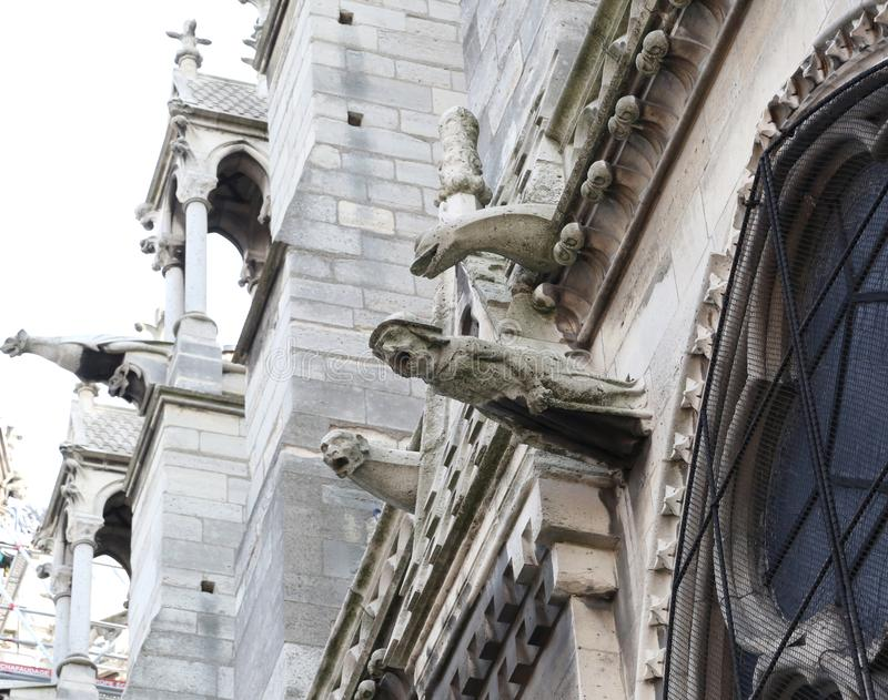 Detail of GARGOYLE in notre dame Basilica in Paris France. Before the fire stock photos