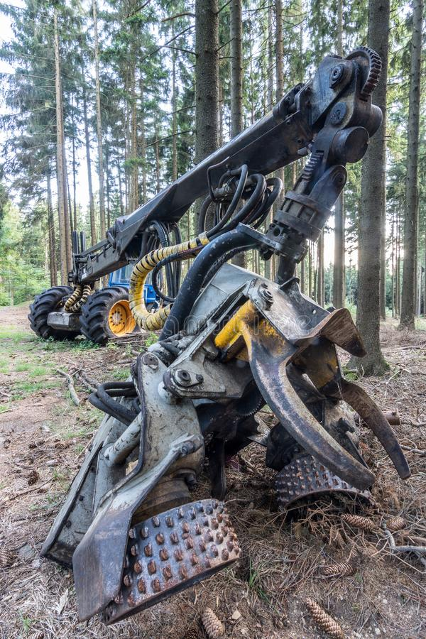 Harvester in the wood and in the summer sun. Detail of the hydraulic crane arm and grapple on the logging machine royalty free stock images
