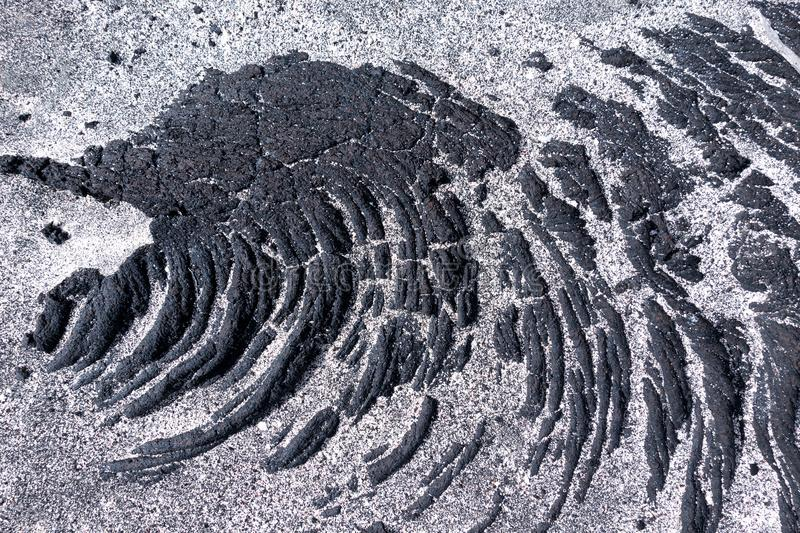 Detail of lava with sand. Detail of black, solidified pahoehoe lava partially covered with bright sand. Taken in El Hierro, Canary Islands, Spain stock photography